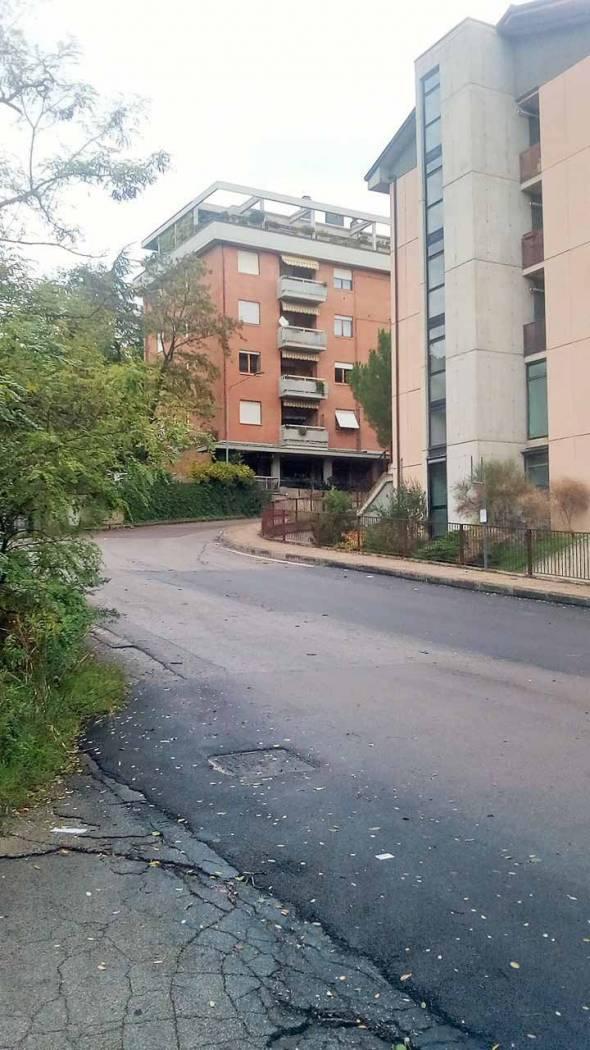 NEGOZIO VENDITA PERUGIA FERRO DI CAVALLO